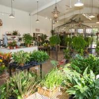 bd-construction-kearney-floral-greenhouse