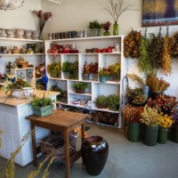 bd-construction-kearney-floral-interior