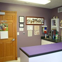 Cottonwood-Vet-Clinic-Nebraska-IMG_229945304resz